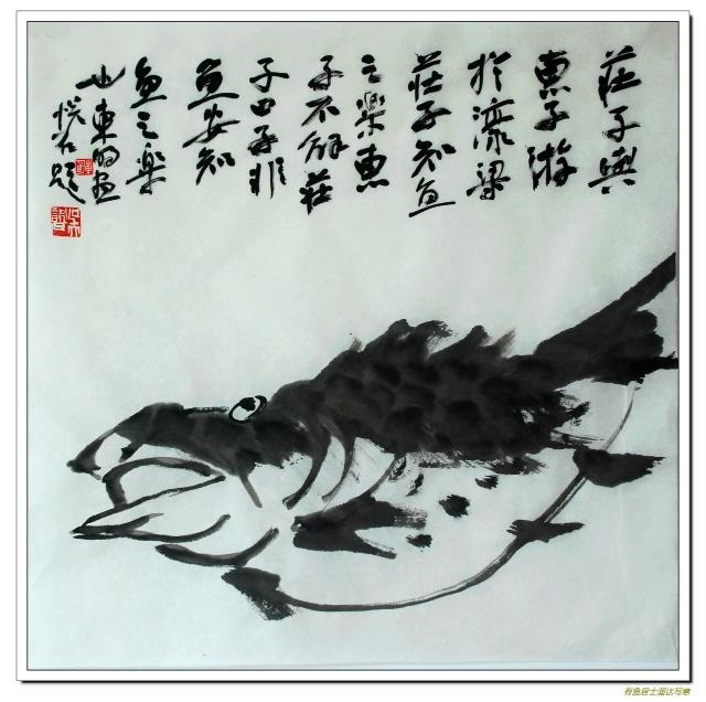 子非鱼安知鱼之乐