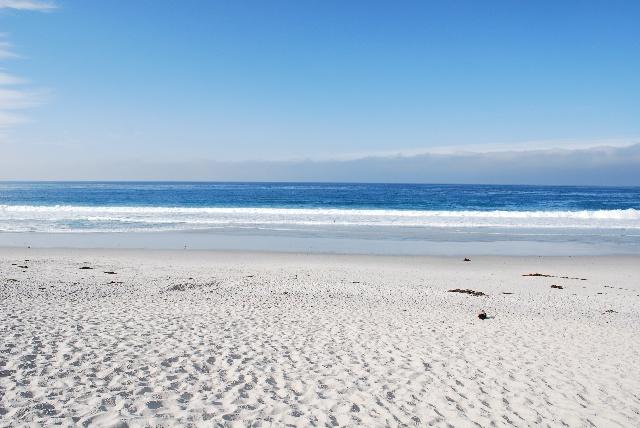 背影大海边风景