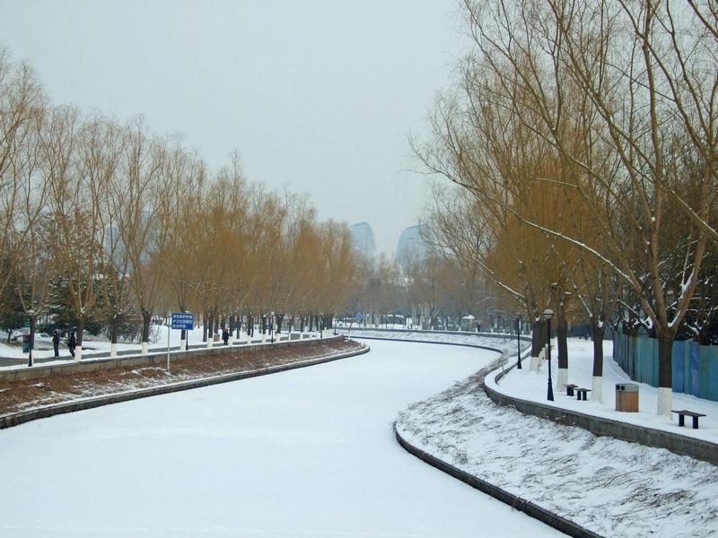 北京动物园早春雪韵