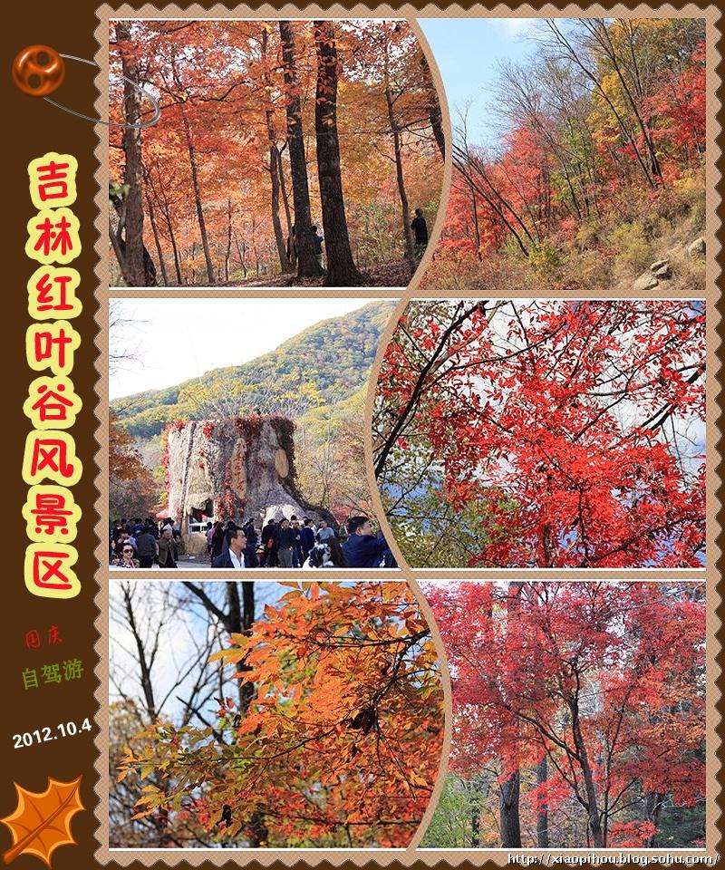 位于吉林省蛟河市庆岭风景区内.
