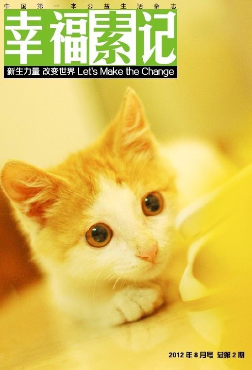 壁纸 动物 猫 猫咪 小猫 桌面 519_762 竖版 竖屏 手机