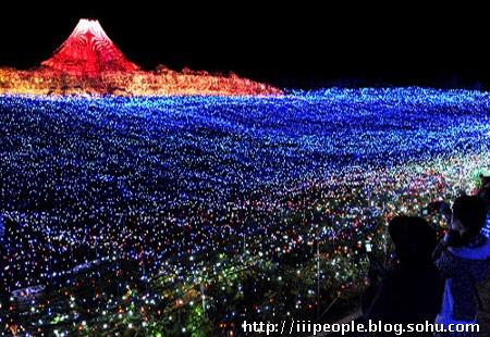 最新风景区led花海灯
