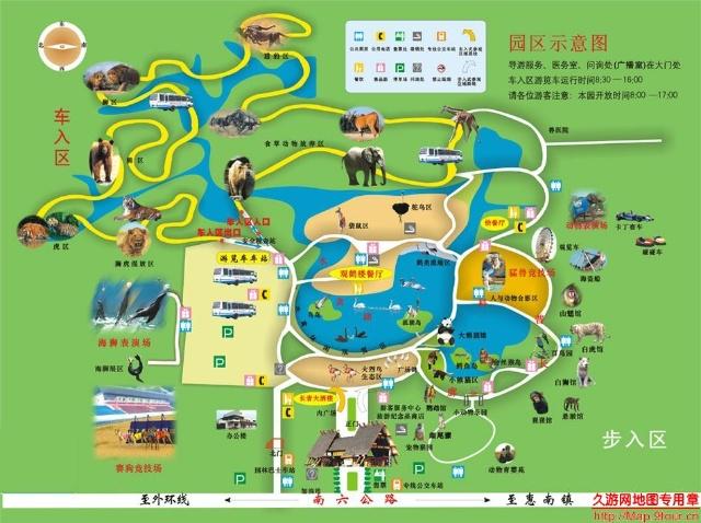 幼儿园秋游~野生动物园