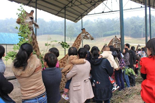 野生动物园游记