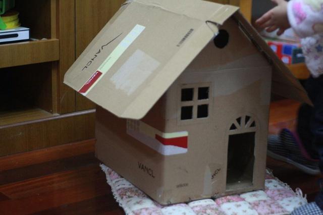 纸箱手工制作大全图解 房子
