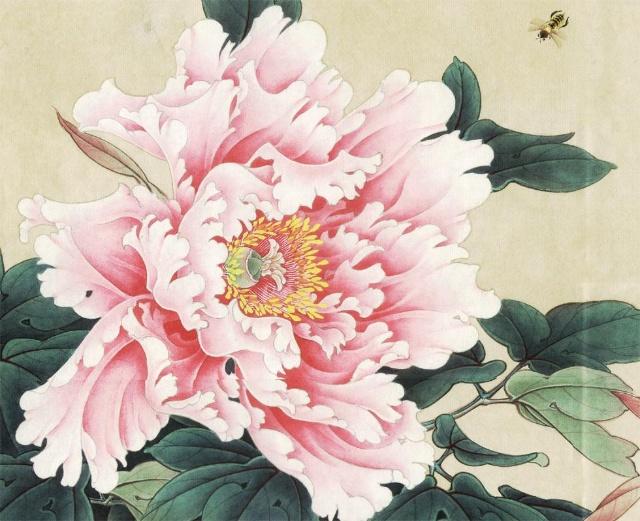 工笔牡丹花头的画法 -李晓明