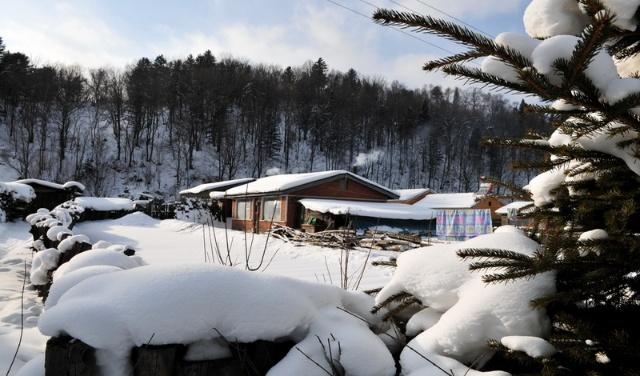 中国雪乡行(三):东升林场(中国雪谷)