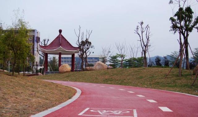 青白江6条观赏绿道 引领健康新生活图片