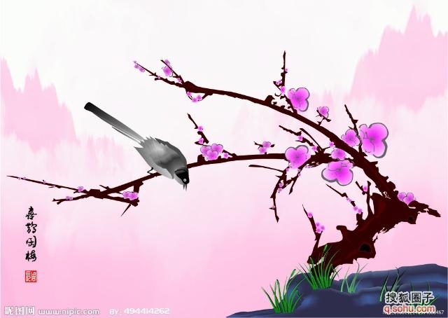 喜鹊与梅花的铅笔画展示