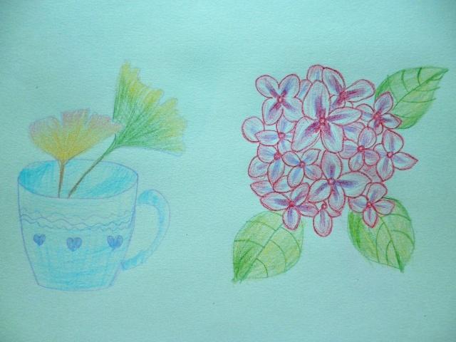 彩铅手绘习作